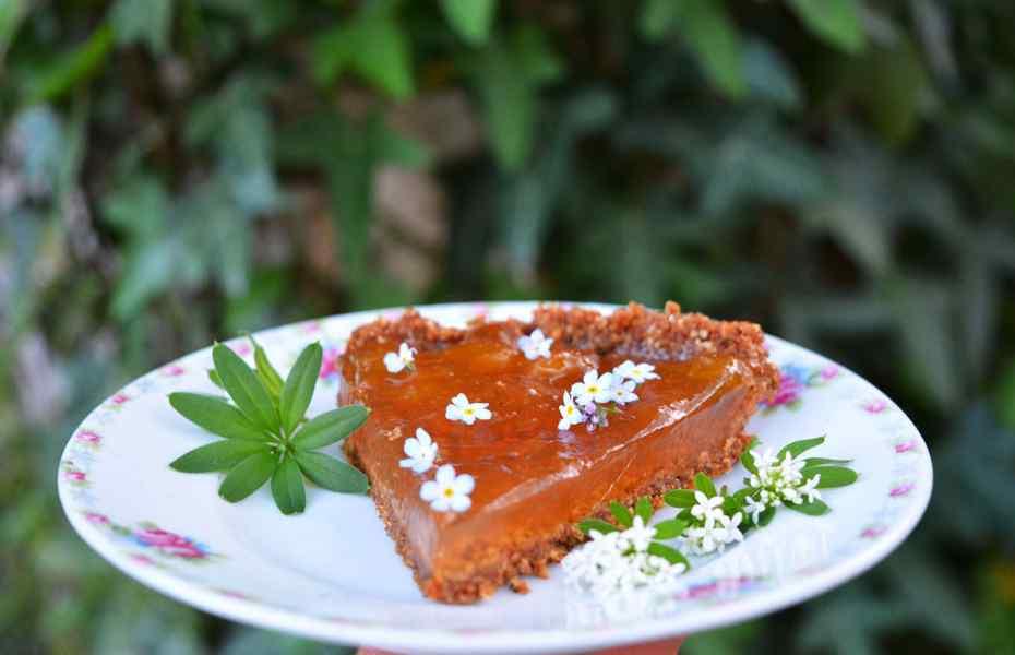 meiwijntaart suikervrij glutenvrij veganistisch plantaardig wildpluk